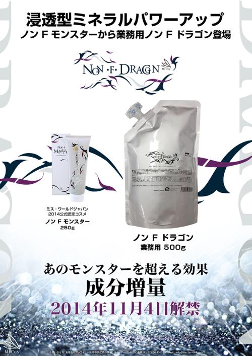 ノンFドラゴンチラシ