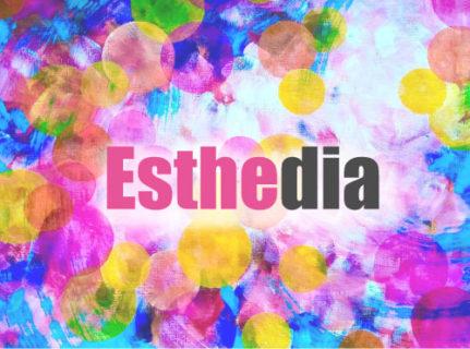 新しいエステサロンのあり方を創造し、全力でサポートしする「エステディア」受付開始!